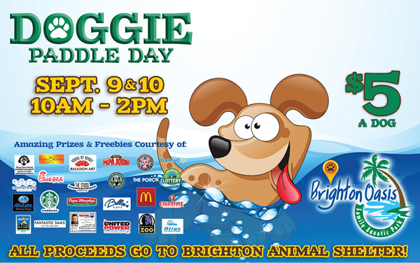 Doggie Paddle Day at The Brighton Oasis