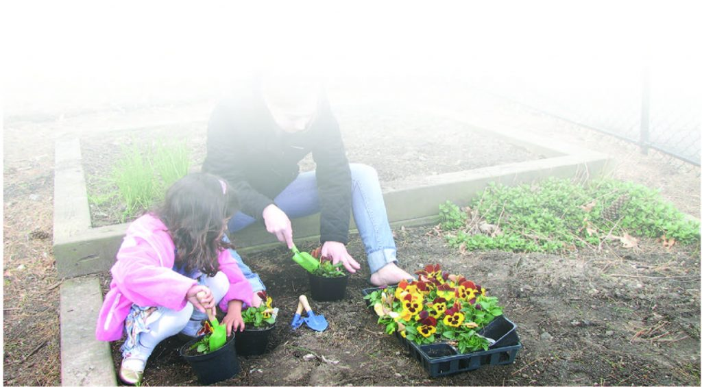 Spring Planting | Young Montessori